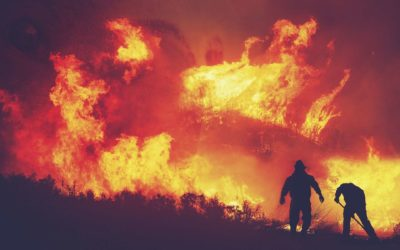 How to Survive a Natural Disaster: Preparation & Safety Tips